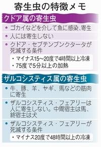 20110712honki.jpg